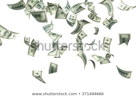 Geld vallen vector illustratie valuta Stockfoto © sonofpromise