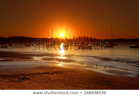 Sun setting over Sydney Harbour with City silhouette Stock photo © lovleah