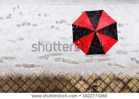woman holding umbrella and snowfall freez stock photo © vetdoctor
