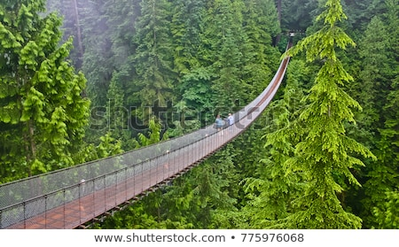 Puente colgante gris nublado día ciudad puente Foto stock © bobkeenan