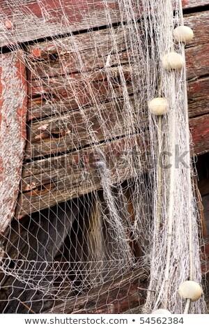 fishnet · corda · verão · porto · pescaria · peixe - foto stock © alex_grichenko