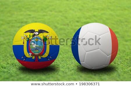 Ecuador vs Frankrijk groep fase wedstrijd Stockfoto © smocker03