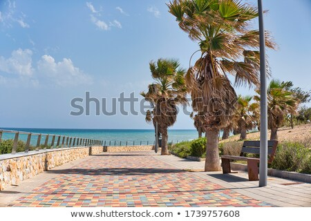 Paved promenade along Mediterranean sea. Stock photo © rglinsky77