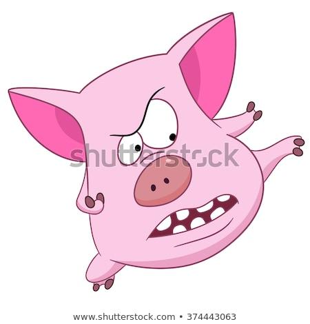 Сток-фото: ниндзя · свинья · см. · портфеля · больше
