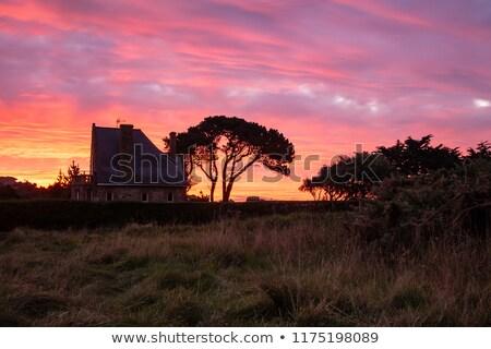 Pôr do sol rosa granito costa idílico barcos Foto stock © prill