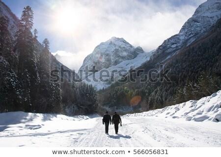 холодно день вверх гор покрытый снега Сток-фото © raferto