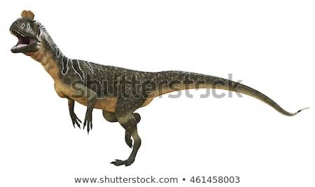 Dinozaur 3d face alb natură mers digital Imagine de stoc © mariephoto
