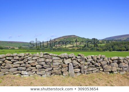 Dry stone wall in England Stock photo © Hofmeester