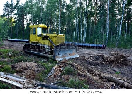 Buldózer erdő nagy citromsárga homok út Stock fotó © MiroNovak