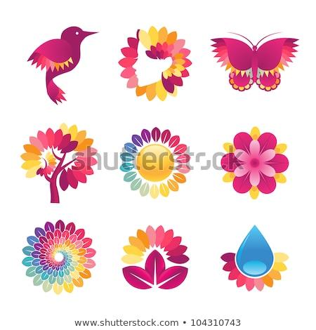 Vector grafische kleur icon sticker ingesteld Stockfoto © feabornset