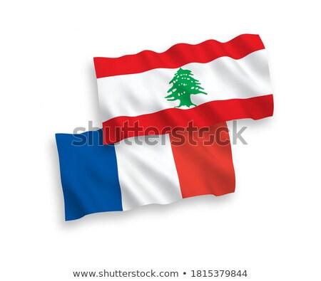 Франция Ливан флагами головоломки изолированный белый Сток-фото © Istanbul2009