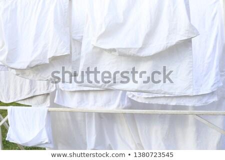 White Laundry hanging outdoors Stock photo © Klinker
