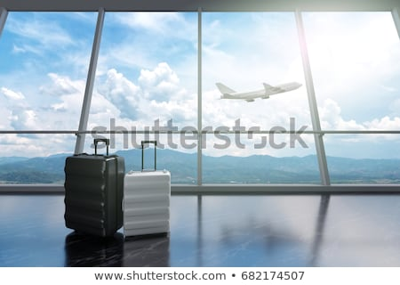 Airplane flying and suitcase Stock photo © bluering