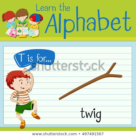 Flashcard letter T is for twig Stock photo © bluering