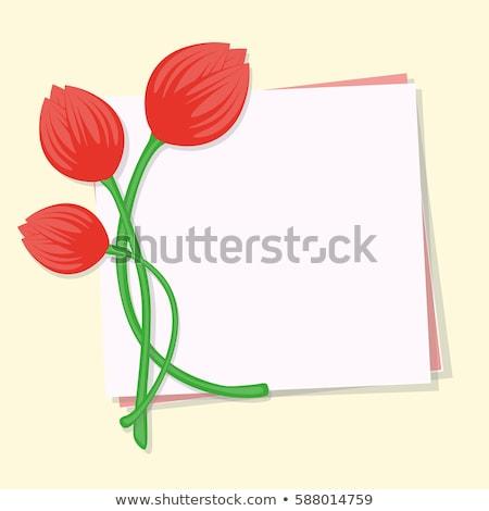 Stock fotó: üres · levélpapír · tulipán · virágok · eps · 10