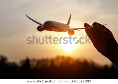 Pilot and flight attendant with airplane in background Stock photo © bluering