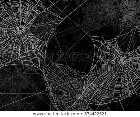 grunge · halloween · frontera · cruz · luna · noche - foto stock © kjpargeter