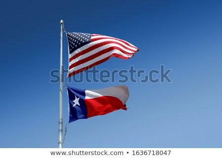 Drapeau américain vent typique mât Photo stock © CaptureLight