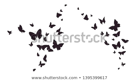 Set of colorful butterfly silhouettes - vector graphic Stock photo © ElaK