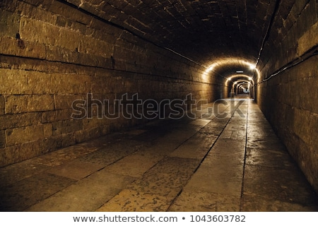 underground passage Stock photo © donatas1205