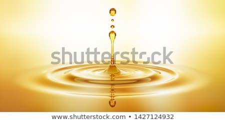 Oleju warzyw butelek szkła tabeli wiosną Zdjęcia stock © zolnierek