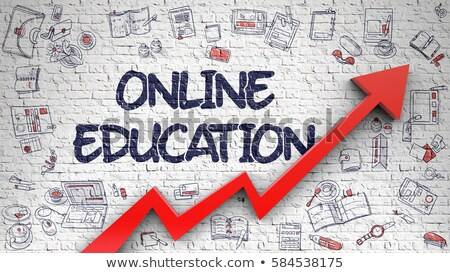 Online Education Drawn on White Brickwall.  Stock photo © tashatuvango