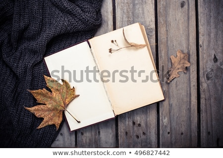 Pusty vintage książki trykotowy sweter otwarte Zdjęcia stock © manera