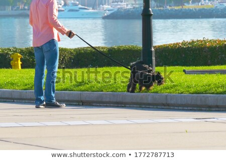 Man Peeing In Park Stock photo © AndreyPopov