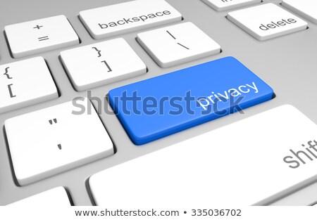 Klavye mavi anahtar gizlilik düğme modern Stok fotoğraf © tashatuvango