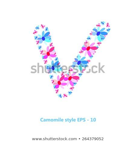 装飾的な · 国境 · バラ · 花 · 緑の葉 · ベクトル - ストックフォト © popaukropa
