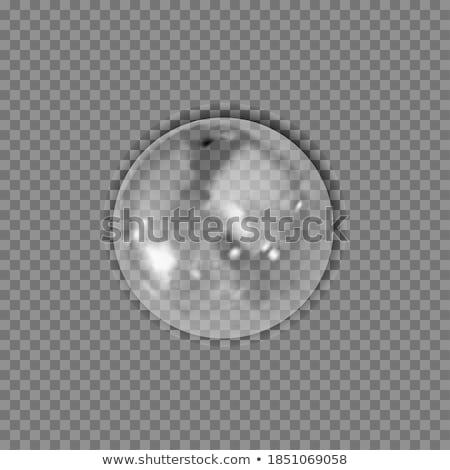 abstrato · ilustração · 3d · água · isolado · grade - foto stock © anadmist