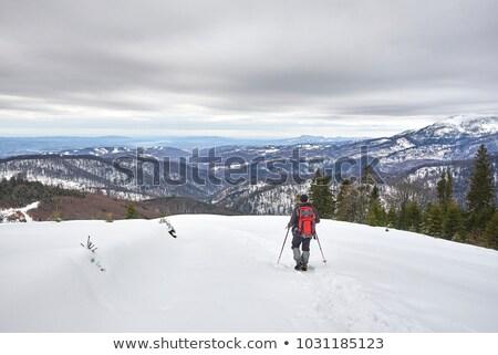 ходьбе снега горные зима лыжных женщины Сток-фото © IS2