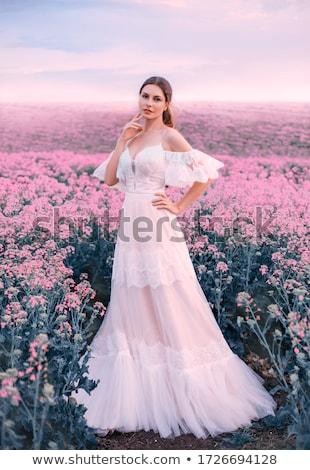 Mooie bruid trouwjurk jonge vrouw make kapsel Stockfoto © svetography