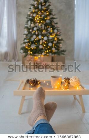Сток-фото: ног · женщину · украшенный · Рождества · гирлянда