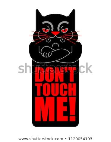 Tocar me ranzinza gato retrato engraçado Foto stock © MaryValery