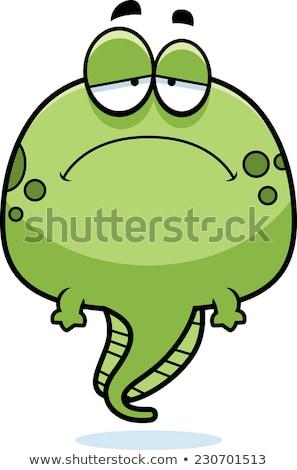 Szomorú rajz ebihal illusztráció néz béka Stock fotó © cthoman