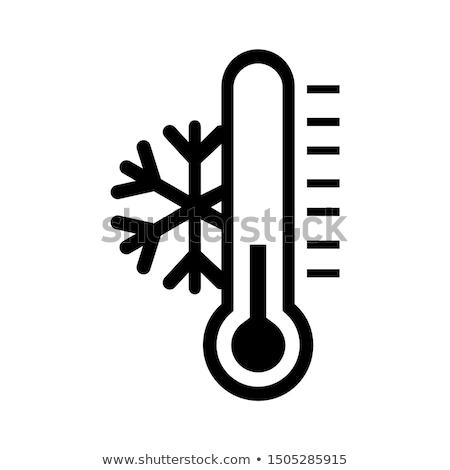 зима · холодно · икона · цвета · дизайна · знак - Сток-фото © angelp