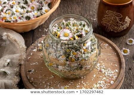 hazırlık · papatya · şurup · taze · çiçekler · kavanoz - stok fotoğraf © madeleine_steinbach