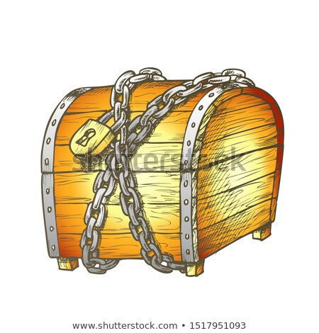 Kincsesláda védett fém lánc szín vektor Stock fotó © pikepicture