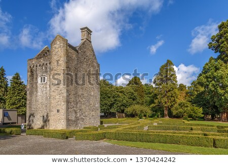 Ashtown Castle, Dublin, Ireland Stock photo © borisb17