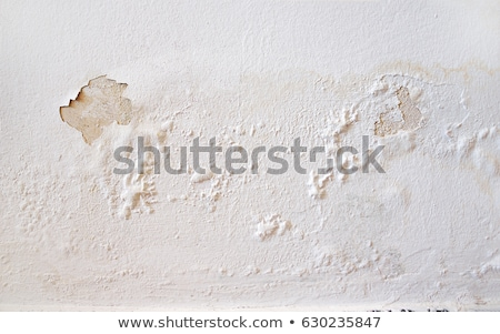 Old damp walls Stock photo © nuttakit