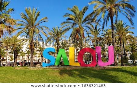 beach boulevard in Salou with palm trees Stock photo © lunamarina