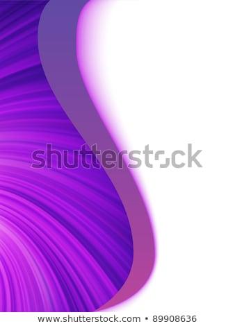 Stock photo: Fiolet purple and white wave burst. EPS 8