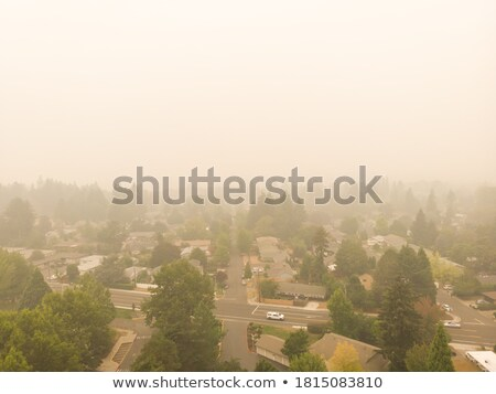 Incêndio florestal fumar montanhas floresta árvores azul Foto stock © skylight