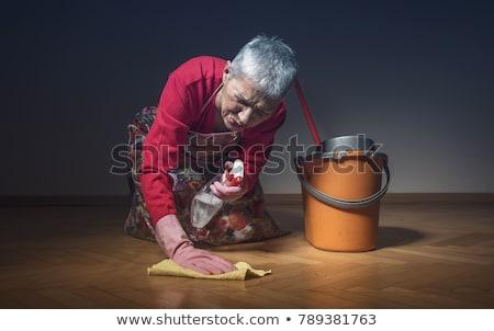 pulizia · signora · donna · panno · spray - foto d'archivio © photography33