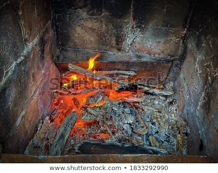 dying hearth Stock photo © smithore