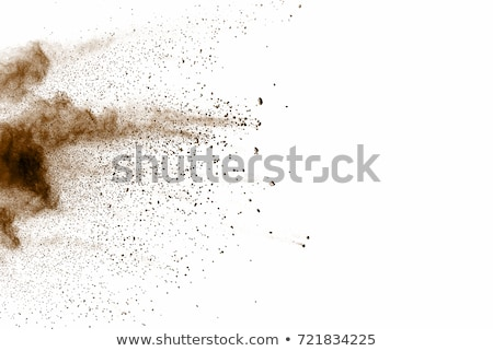 Brunette dusting Stock photo © photography33