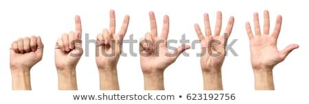 hands of counting from zero to five Stock photo © experimental