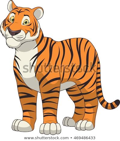 Tigris rajz mosoly boldog természet vicces Stock fotó © dagadu