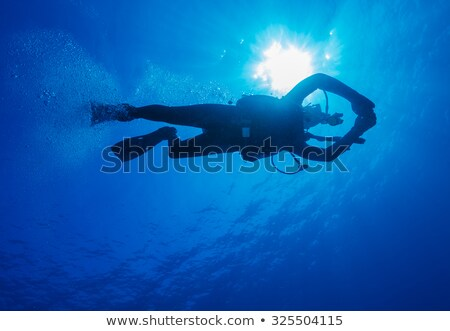Divers weights Stock photo © Forgiss
